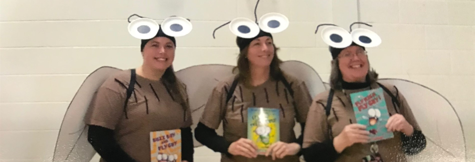 Pic:  teachers dressed as Fly Guy